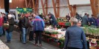 Pflanzen- und Genussmarkt Ökoregion Kaindorf